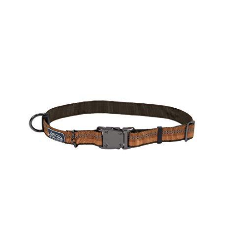 Coastal - K-9 Explorer - Reflective Adjustable Dog Collar, Campfire Orange, 1' x 18'-26'
