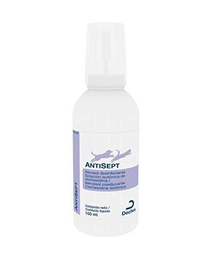 Dechra Spray Antiséptico - 100 ml