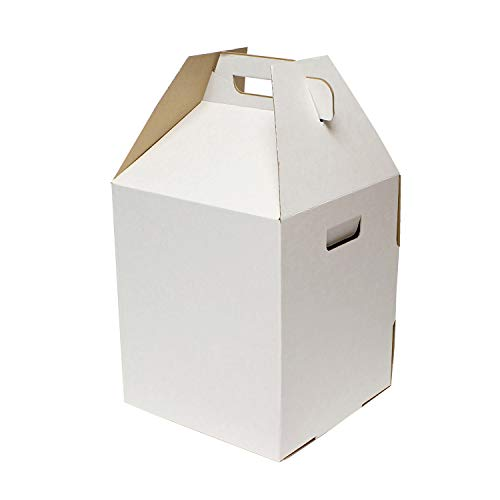 SpecialT | Disposable Cake Carrier Tall Cake Caddy 2 or 3 Layer Cake Carrier - 12 Inch Tall 10x10 Cake Box 10-Pack