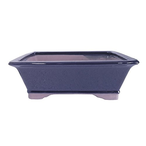 Brussel's 10' Rectangle Bonsai Glazed Ceramic Pot (Large, Dark Navy)