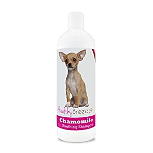 Healthy Breeds Chamomile Dog Shampoo & Conditioner with Oatmeal & Aloe for Chihuahua – OVER 200 BREEDS – 8 oz – Gentle for Dry Itchy Skin – Safe with Flea and Tick Topicals