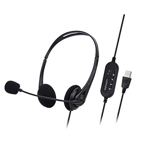 BigPassport USB Headphone Headset with Mic & Inbuilt Sound Controls for Computer & Laptop | Noise Cancellation with Auto Voice Enhancement | Skype Call & Zoom Call Headphone (Model: Pro-Tech 491)