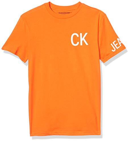 Calvin Klein Men's Brand Traveling Logo T-Shirt, Orangeade, Large