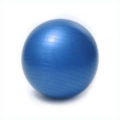 JOWY Pelota Fitness Ejercicio para Yoga Pilates Tecnología Antiexplosión Entrenamiento Ejercicios de Equilibrio 55 cm