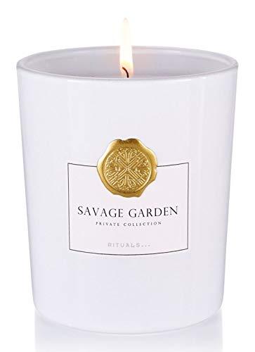 RITUALS SAVAGE GARDEN Kerze 360g, Brenndauer 60 Std Duftkerzen verschiedene Rituals Düfte als Auswahl auf dieser Seite, inkl. FILABE Pflegetücher
