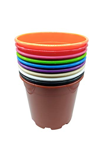 MURGIPLAST Plastic Plant Pots for Plants and Flowers, Decorative Garden Planters, Colourful Growing Containers, 22 cm, Pack of 12
