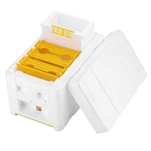 Yardwe Bienenstock Bienenbox Bienenkasten Schaum Bienenkönigin Box Bienenzucht Zubehör Imkerei Werkzeug für Imkerstarter