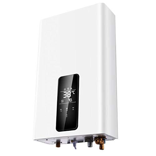 WL@ Durchlauferhitzer für Gas-Heizung, 27 kW, Durchlauferhitzer aus natürlichem Gas, Wand-Durchlauferhitzer mit Duschkopf, EIN unverzichtbares Haushaltsgerät für Ihr Zimmer, silberfarben, 12 l