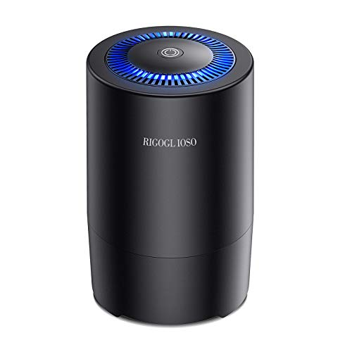 RIGOGLIOSO Air Purifier for Bedroom, Compact HEPA Air Purifier, Purify 99.97% of Pollen Dust Smoke...