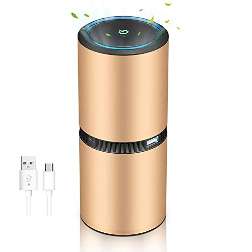 Nrpfell Portable Mobile Ionizer Air Purifier for Car or Home, Negative Ion Generator for Air Purification, Filter-Less, Gold