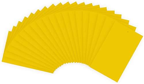 zyh Paquete de 20 trampas Adhesivas Amarillas de Doble Cara para cucarachas para Mosquitos,Moscas Blancas,pulgones,mineros de Hojas,Otros Insectos voladores,Insectos (25x15cm)