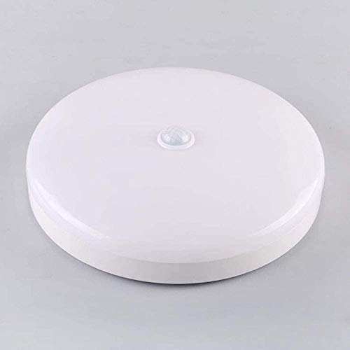 LED Plafondlamp Bewegingssensor Plafondlamp 220V Ronde Lampen voor Trap Gangpad Balkon Badkamer, Binnen en Buiten Nacht Infrarood Sensor Verlichting, 18W