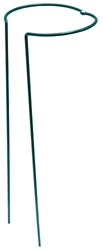 Connex Staudenstütze 31x31x100 cm, flexibel / Strauchstütze / Pflanzenstütze / Blumenhalter / Garten / FLOR78456