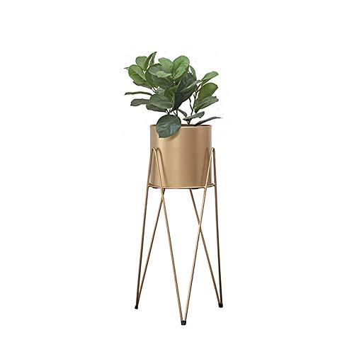 Nordic Moderne Minimaliste Or en Fer forgé Stand de Fleurs étage Balcon Salon Pot Rack Plante présentoir (Taille : 20 * 60cm)