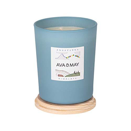 AVA & MAY Himalaya Duftkerze (180g) – vegane Kerze im Glas mit würzigen Düften von Kiefer, Rosmarin und Thymian – Handgemachte Kerze mit Nähe zur Natur