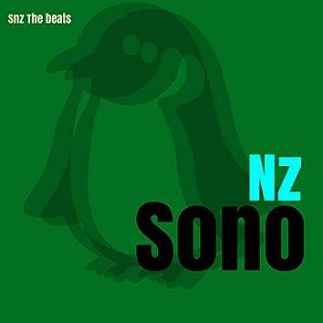 Snz The Beats (Instrumental)