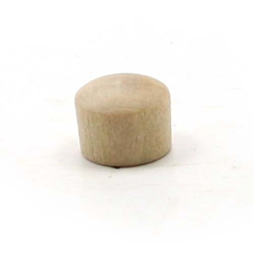 mylittlewoodshop–Paquete de 6–Roundhead enchufe botón–1/4pulgadas de diámetro sin terminar madera (ww-br0250–6)