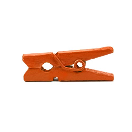 LWR Stellmotor Crafts Mini-Holz-Wäscheklammern 15Farben 100Pro Pack 2,5cm 2,5cm schwarz