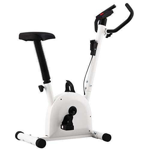 vidaXL Bicicleta Estática Ejercicio con Sillín Bici Máquina de Cardio Gimnasio