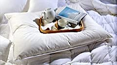 "The ultimate experience from Europe for lounging in bed This oversized and overfilled pillow is filled with 50% white goose down and 50% small white goose feather One Oversized size -- Size 31"" x 40"" inches 550+ fill power. Comes with Pillow protecto..."