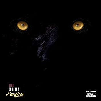 Soul of a Panther