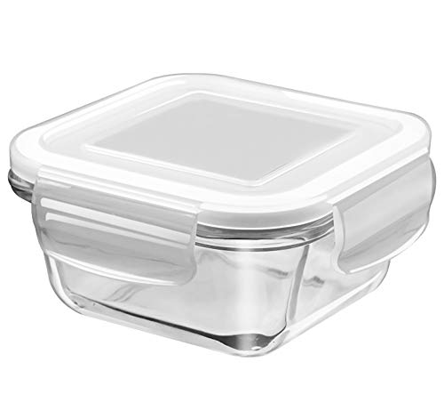TREO Glass Container- 300 ml, Transparent