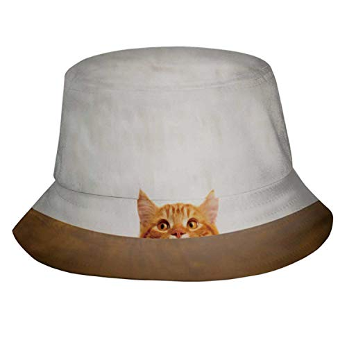 Big-Eyed Naughty cat Looking at The Target.British sort Hair cat.Turkey - Middle East,Bucket Hats for Women Men Rollable Fisherman Sun Cap Domestic Cat