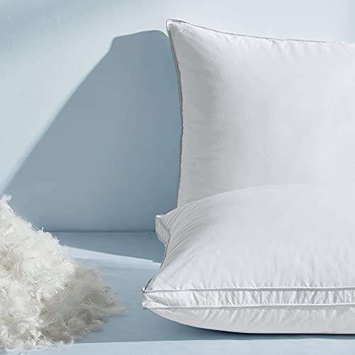 Top 10 Best feather pillows for sleeping Reviews