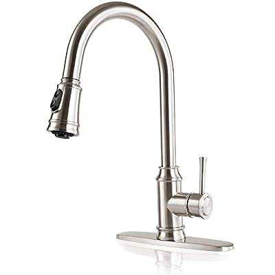 Kitchen Faucet with Sprayer, MSTJRY Kitchen Sin...