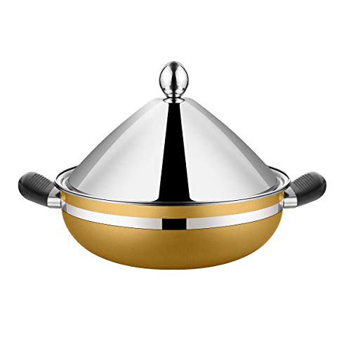 Stainless Steel Moroccan Tagine Pot,Steamer Pot, Braiser Tajine with Lid, Golden Color, 10.2 Inches, 26cm