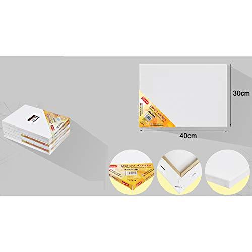 Pack de 6 lienzos 30 x 40cm de 100% algodón apto para óleo, acrílico y mixto, pre-estirado, color BLANCO. Libre de ácido.