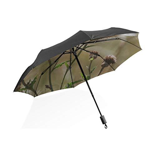 Regenschirm Frauen Distel Stachelige Blume Verwelkt Blumen Pflanze Tragbare Kompakte Taschenschirm Anti Uv Schutz Winddicht Outdoor Reise Frauen Regenschirm Groß