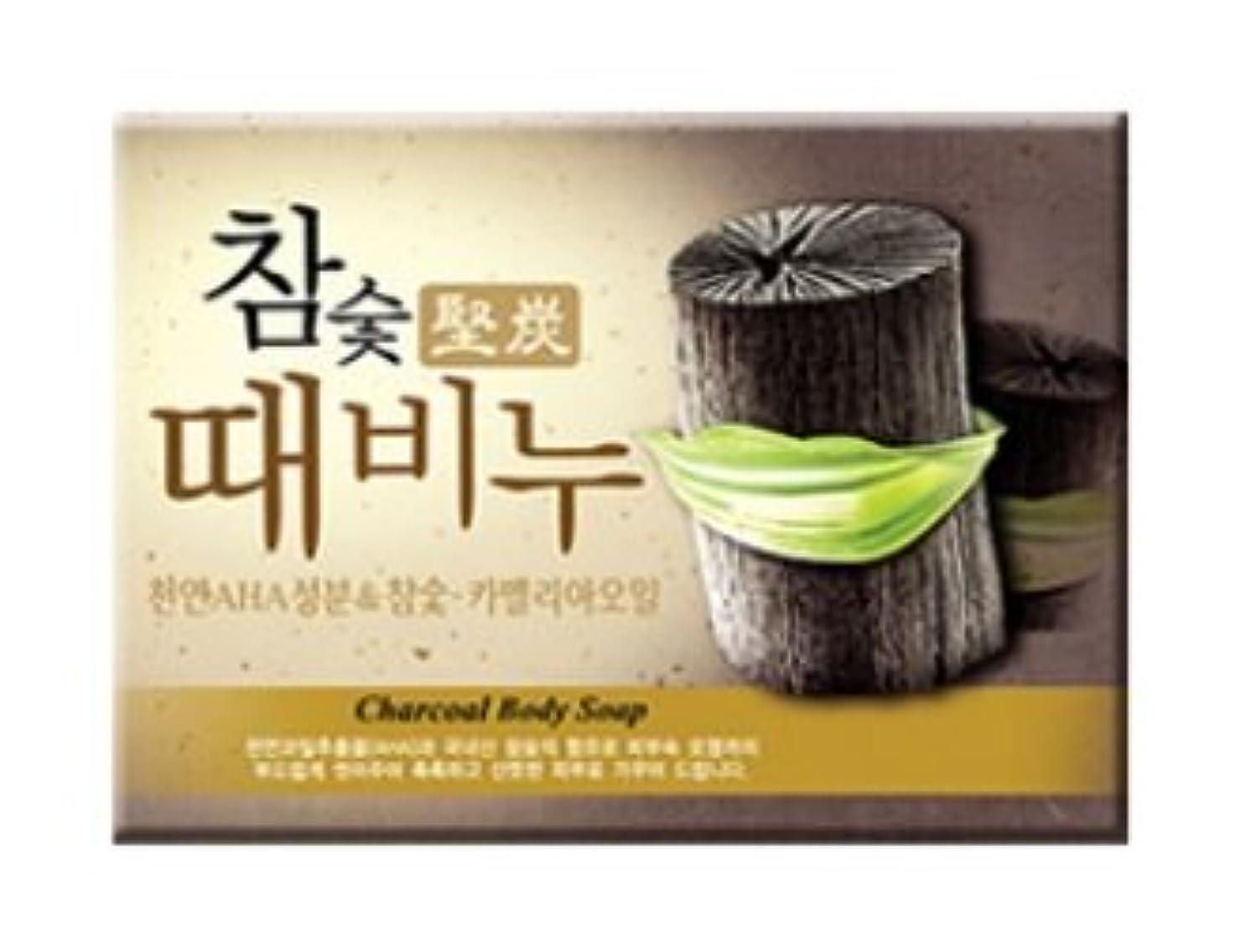 最愛の寺院起きて堅炭ソープ 100g / Charcoal Body Soap [並行輸入品]