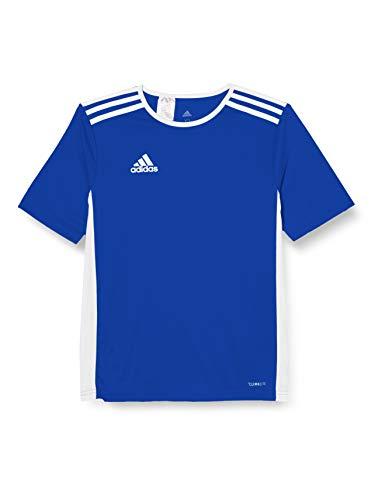 adidas Entrada 18 JSY T-Shirt, Hombre, Bold Blue/White, M
