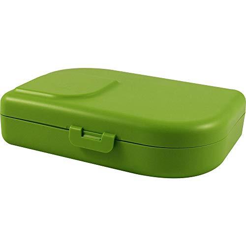 ajaa Nana Brotbox lime (2 x 1 Stk)