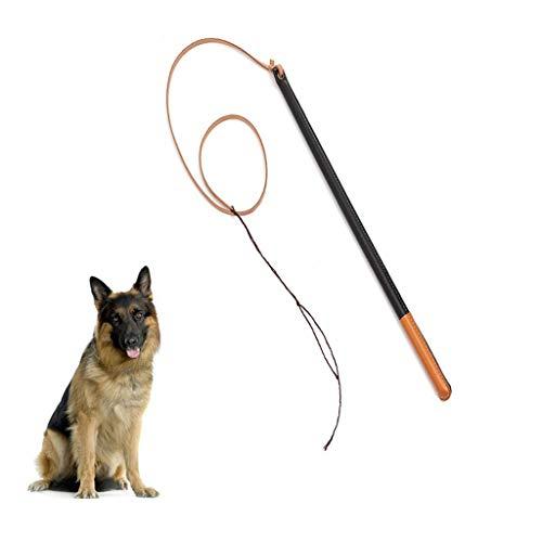 YONFAN Hundepeitsche Hund Training Peitsche für Hunde Haustier Training, Übung Professional