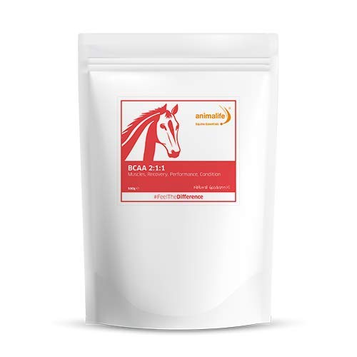 ANIMALIFE Equine Essentials BCAA Powder 500g