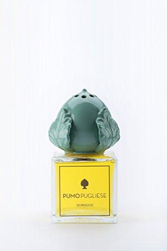 Pumo Pugliese - Diffusor mit Holzstäbchen Raumduft - Objekt aus bunter Keramik - Made in Italy - Dekoration für Zuhause - Geschenkidee - Gönlicher Duft 100 ml