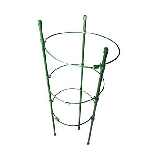 HEMOTON 4pcs Garden Trellis Kletterpflanzen unterstützen Käfigständer für Pfeffer Auberginen Küchenwaren