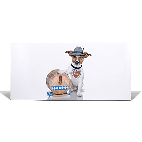 banjado Design Magnettafel weiß | Wandtafel magnetisch 37x78cm groß | Metall Pinnwand | Memoboard mit Magneten und Montageset | Motiv Bayer Jack Russel