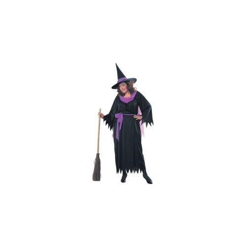 Adult Plus Size Wicked Witch Costume