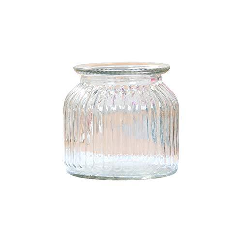 Skyeye 1PCS Vertical rayé col Large Vase en Verre Jacinthe d'Vase en Verre hydroponique Vase pour Home Garden Décoration Blanc 10.8*11CM