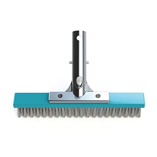 Bayrol Cepillo de Limpieza de 25 cm con cerdas de Acero Inoxidable 411006, Color Turquesa
