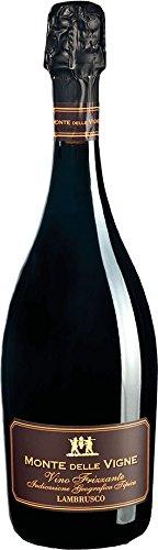 Lambrusco Monte delle Vigne