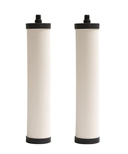 Franke FRC06-2PK Replacement Filter Cartridge, 2-Pack