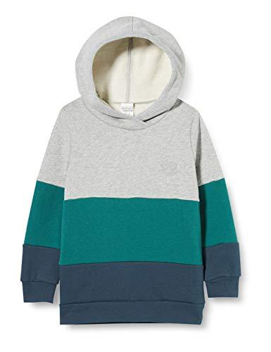 Fred'S World By Green Cotton Hoodie Sweat-Shirt À Capuche, Gris (Pale Greymarl 207670000), 98 Bébé garçon