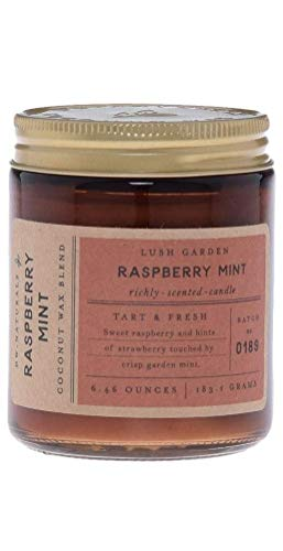 Decoware DW Home Naturals Raspberry Mint Scented Candle, Single Wick, 6.4 Oz, Coconut Wax Blend