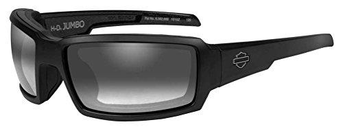 HARLEY-DAVIDSON Wiley X Jumbo Light Adjusting Motorrad Brille