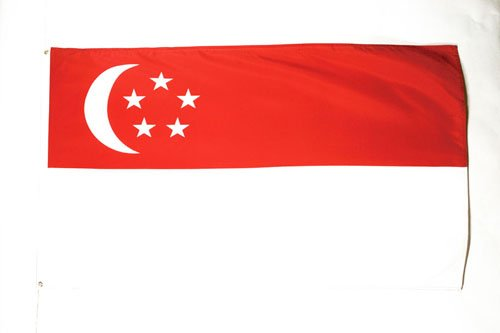 AZ FLAG Flagge Singapur 90x60cm - SINGAPURISCHE Fahne 60 x 90 cm - flaggen Top Qualität