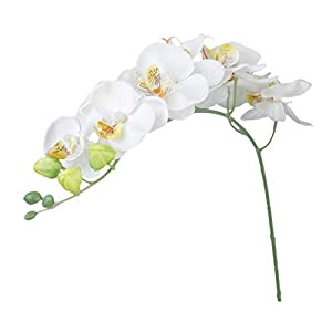 Fssladek – Flowers For – 2 Branches Butterfly Orchide Artificial Flower Wedding Colors – Turquoise Room Lily Cherry Look Pansies Decorations Heads Centerpiece Long Cleaner Jewellery Natural Peony